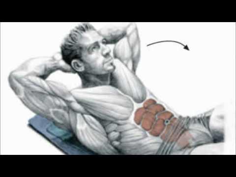 dietas para bajar de peso combinadas con ejercicio