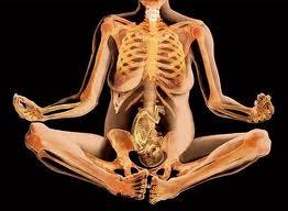 Esqueleto mama y bebe